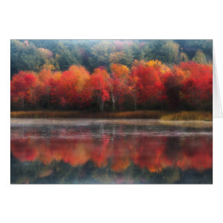 October Trees Card