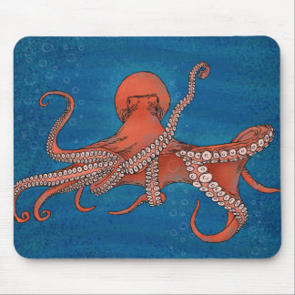 Octopus approaching mouse pad
