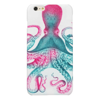 Octopus illustration - vintage - kraken