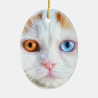 Odd-Eyed White Persian Cat Ceramic Oval Ornament