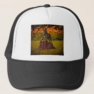 Odd friends trucker hat
