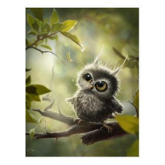 Odd Käuzchen/small owl Postcard