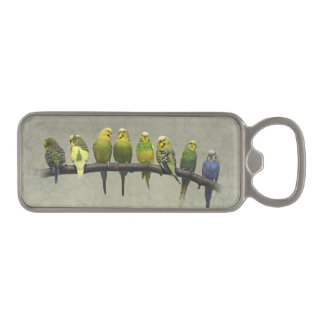 Odd One Out Bottle Opener