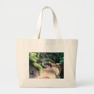 Odd One Out Canvas Bag