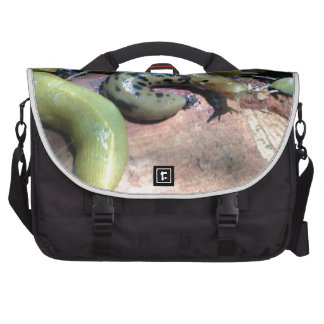 Odd One Out Computer Bag