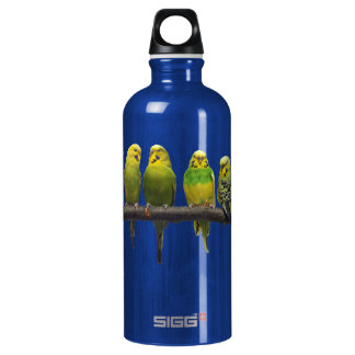 Odd One Out Water Bottle