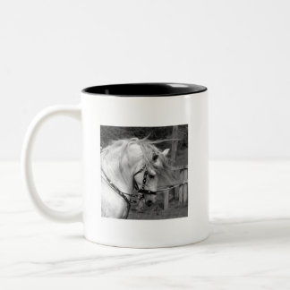 Ode to the Horse Two-Tone Coffee Mug