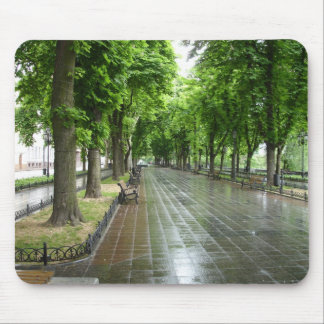 Odessa Park (3) Mouse Pad