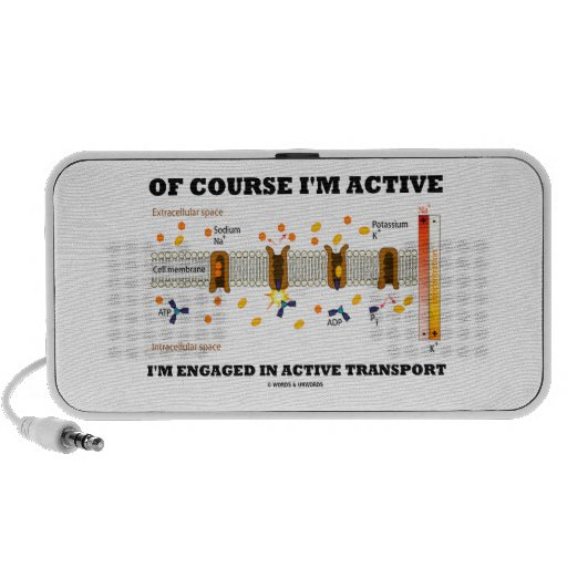 Of Course I'm Active Engaged In Active Transport Speaker System