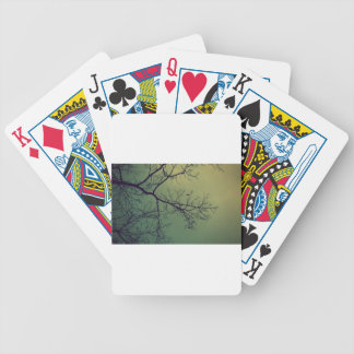 Of life and limbs bicycle playing cards