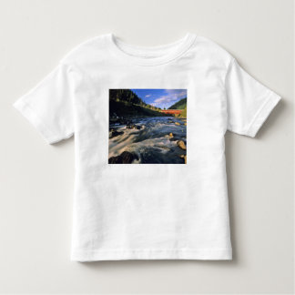 Office Covered Bridge the longest in Oregon at Toddler T-shirt
