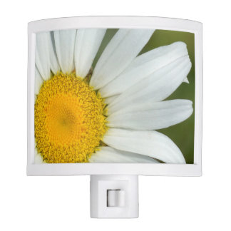 Offset Daisy Night Light