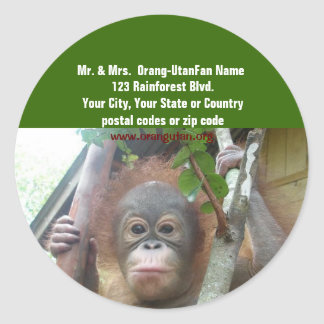 OFI Orangutan return address labels