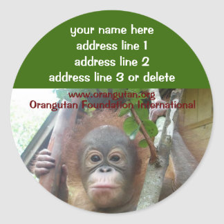 OFI Rescued Wildlife Charity address labels