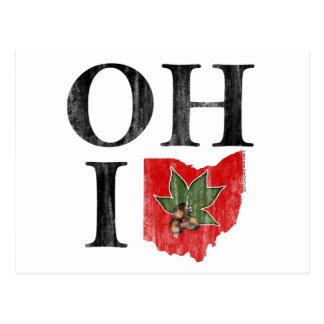 OH IO Typographic Ohio Vintage Red Buckeye Nut Postcard