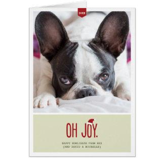 Oh Joy | Folded Holiday Pet Photo Greeting Card