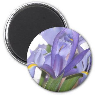Oh Mighty Iris! magnet