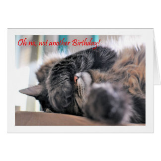 Oh no, not another Birthday! Cat Happy Birthday Card