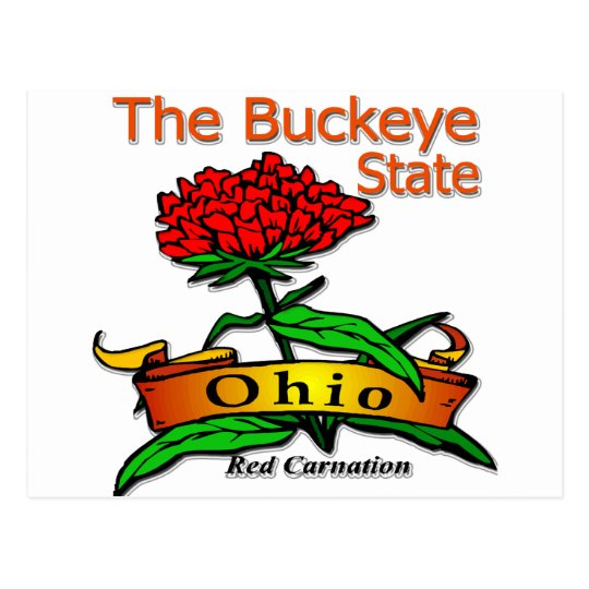 Ohio Buckeye State Red Carnation Postcard