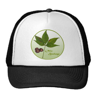 Ohio Buckeye Tree Trucker Hat