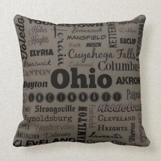 Ohio throw pillow in gray/black