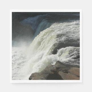 Ohiopyle Falls in Pennsylvania Paper Napkin