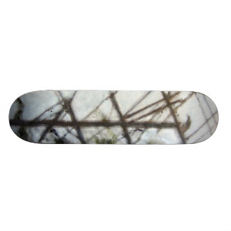 Oil Painting Crow HDR Toning Skateboard