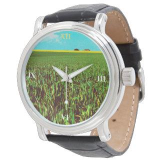 Oil Seed Prairie Watch