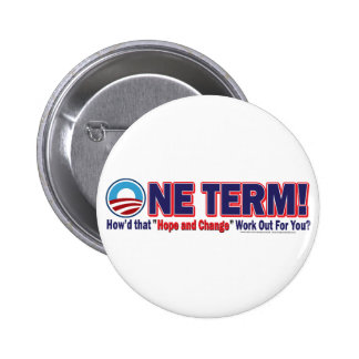 OIne Term - How d that Hope and Change Work Out Pin