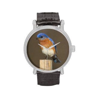 Oiseau bleu oriental montres bracelet