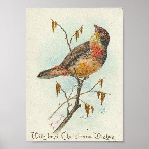 Oiseau vintage de Noël Posters