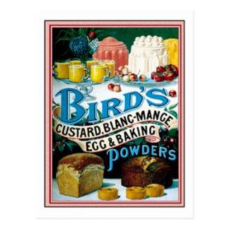 Oiseaux vintages crème anglaise oeuf de blanc-man cartes postales