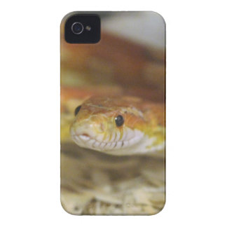 oj the snake Case-Mate iPhone 4 cases