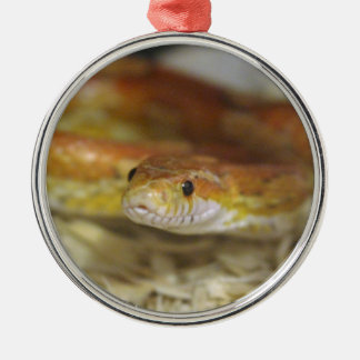oj the snake Silver-Colored round ornament