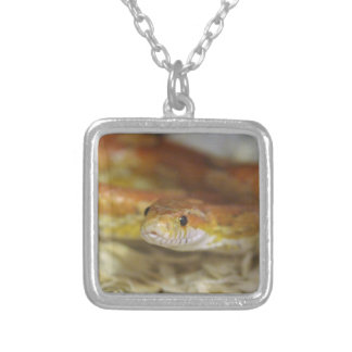 oj the snake silver plated necklace