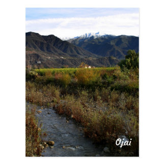 Ojai Small Creek Postcard