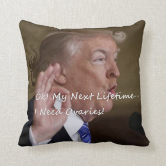Ok! My Next Lifetime--I Need Ovaries! Throw Pillow