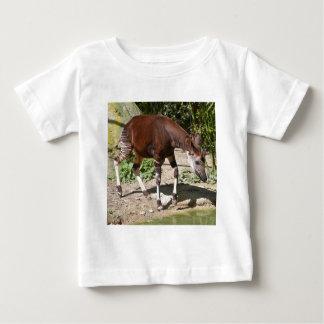 Okapi (Okapia johnstoni) near pond among vegetatio Baby T-Shirt