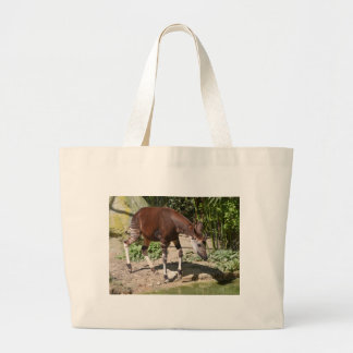 Okapi (Okapia johnstoni) near pond among vegetatio Large Tote Bag