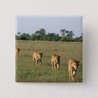 Okavango Delta, Botswana 4 2 Inch Square Button