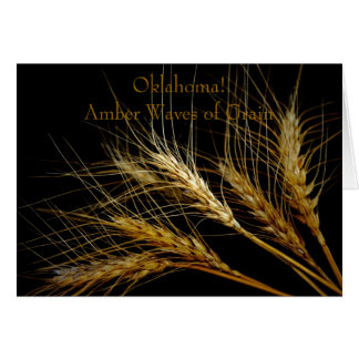 Oklahoma! Amber Waves of Grain Card