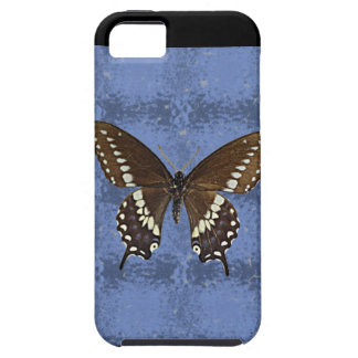 Oklahoma Black Swallowtail Butterfly iPhone 5 Case