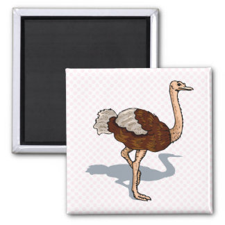 Olaf Ostrich Square Magnet