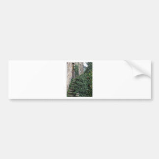 Old abandoned country homestead in the woods bumper sticker