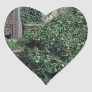 Old abandoned country homestead in the woods heart sticker