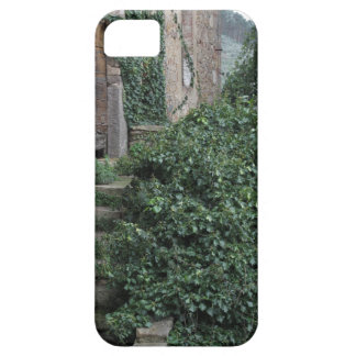 Old abandoned country homestead in the woods iPhone 5 case