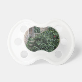 Old abandoned country homestead in the woods pacifier