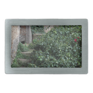 Old abandoned country homestead in the woods rectangular belt buckle
