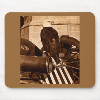 Old Abe-The Wisconsin War Eagle Stereoview ca 1875 Mouse Pad