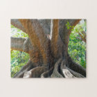 Old ancient 200 year old Tree- Bangalore Garden. Jigsaw Puzzle